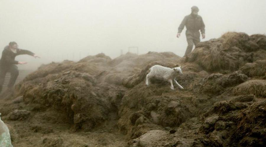 Не меньшую опасность таит и Катла, в кальдере которой произошли несколько землетрясенией. А Гримсветн так и вовсе извергался сравнительно недавно: в 2011 году он выбросил столб пепла на целых 20 километров в высоту.