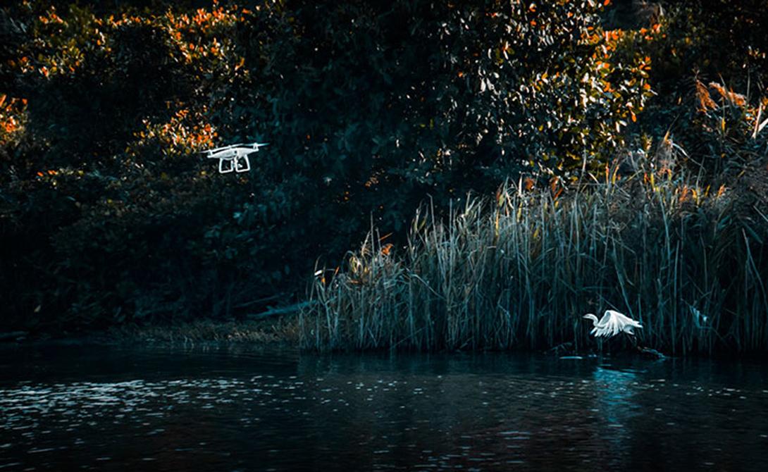 Встречайте Фантома Второй приз в категории Professional Drones In Use Category