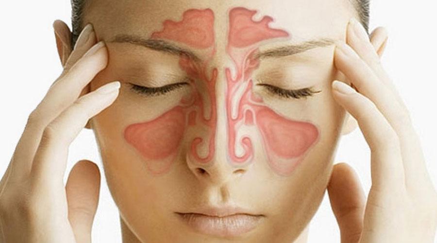 Придаточные пазухи носаВрачи полагают, что придаточные пазухи носа могут действовать как резонатор, влияя на формирование нашего голоса. Кроме того, они же представляют собой своеобразный антиударный буфер при ударах.