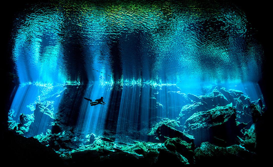 Выход из синего Номинация: Кейв-дайвингАвтор: Ник Блэйк Снимок Блэйка напоминает настоящее произведение искусства. Эта фотография сделана в одном из сенотов полуострова Юкатан: солнце проникло в пещеру сквозь толщу воды и превратило окружающий мир в театральные декорации.