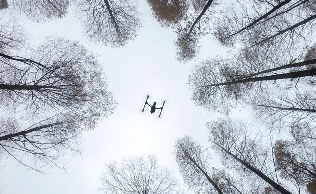 Вдохновение в деле Второй приз в категории Enthusiast Drones In Use
