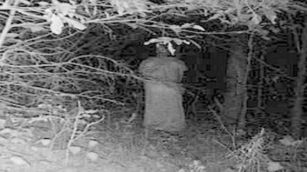 Призрак Кадр будто бы вырезан из фильма ужасов. Фигура облачена в длинное пальто, или может быть платье. Разобрать лицо (или это всего лишь игра теней на листьях) тоже не представляется возможным.