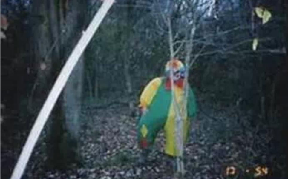 Клоунада Многие люди боятся клоунов и, судя по всему, правильно делают. На данного конкретного клоуна в прошлом году охотилась вся полиция Алабамы: он выходил из леса к школам и отдельно расположенным коттеджам. Нет, нападений не было. Клоун просто стоял и смотрел. Найти шутника так и не удалось.