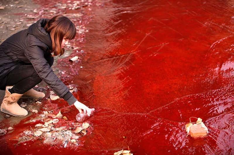 Цзинхе Китай Никто из местных уже и не воспринимает всерьез официальное название реки. Когда-то городская фабрика начала сливать сюда все токсические отходы с красителями, и теперь для китайцев это Кровавая река.
