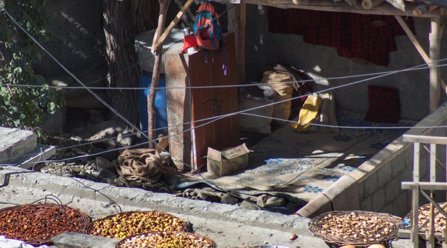 Сезонная диета В долине выбор пропитания невелик. Летом рацион хунзакутов составляют фрукты и овощи, на зиму тут запасают высушенные абрикосы, пророщенные зерна и овечью брынзу. В период весеннего голода (два-три месяца до того, как поспеют свежие фрукты), члены племени поддерживают свои силы исключительно зернами и специальным напитком из вяленых абрикосов.