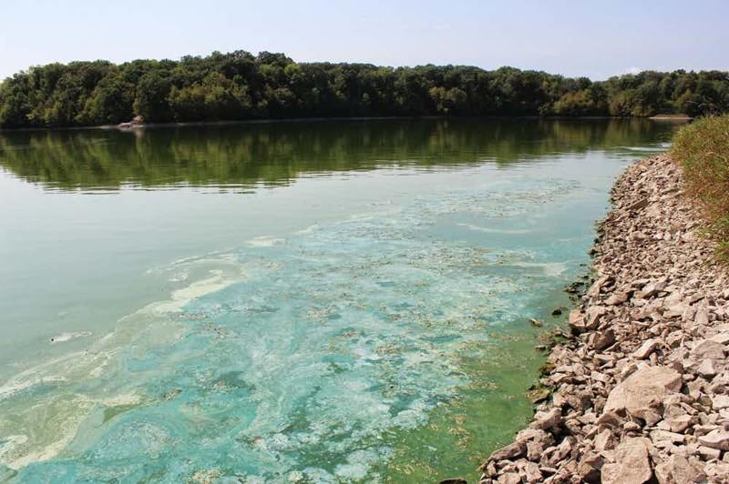 Миссисипи США Великая Миссисипи всегда была главной рекой США. И пока человек не увлекся химией, воды ее считались чистейшими во всей стране. Сегодня же заходить в реку просто опасно для жизни: только в 2015 году несколько крупных химических концернов Америки слили сюда 13 миллионов тонн ядовитых отходов.