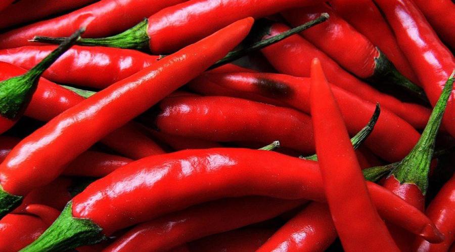 ПерецНет, полумерами тут не обойтись: есть придется красный жгучий перец. Чили, халапеньо, кайенский перец и другие подобные продукты содержат капсаицин. Это соединение ускоряет циркуляцию крови в организме, соответственно и метаболизм становится быстрее.
