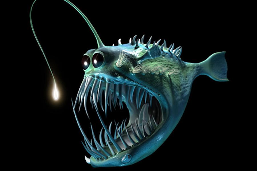 Находки в адских глубинах Ученые и сегодня не способны идентифицировать существ, обнаруженных на самом дне Марианской впадины. Автоматический зонд Nereus вынес из погружения массу фото- и видеозаписей, на которых запечатлены странные, подчас действительно пугающие создания. Полутораметровые черви без рта, осьминоги, похожие на мутировавшие тентакли из японских мультфильмов, гигантские морские звезды — в этих водах лучше и вовсе не плавать.