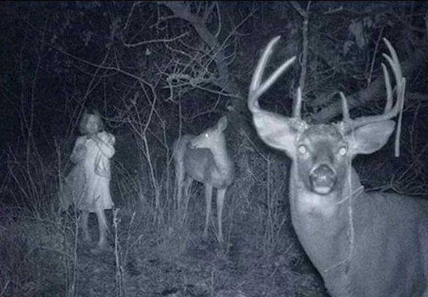 А вот это уже реально жутко. Что делает девочка в лесу ночью?