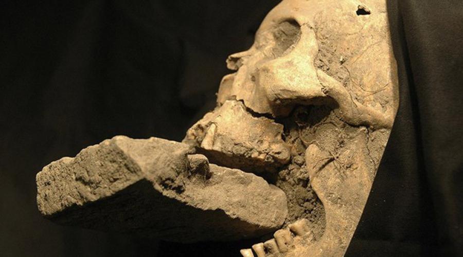 Венецианский кровопийца Судя по всему, вампиры жили не только на территории Восточной Европы. Венецианцы и миланцы также опасались кровопийц. Останки этого, к примеру, нашли в одном из каналов Венеции. Предполагаемый вампир был скован по рукам и ногам, а рот его был забит цементом. Самое удивительное, что один из клыков мертвеца на самом деле отличался длиной и остротой — второй же был совершенно нормальным.