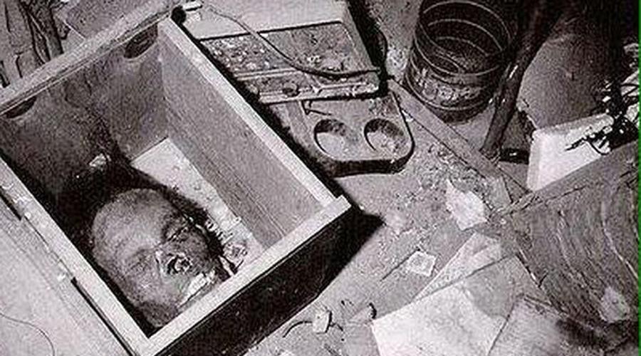 Арест и признание Тут вернулся и хозяин дома. Полицейским стоило большого труда не пристрелить маньяка на месте. На суде Гейни сказал, что и в самом деле убил двух девушек, Вернис и Мэри, а остальные части тела выкопал на ближайшем кладбище.