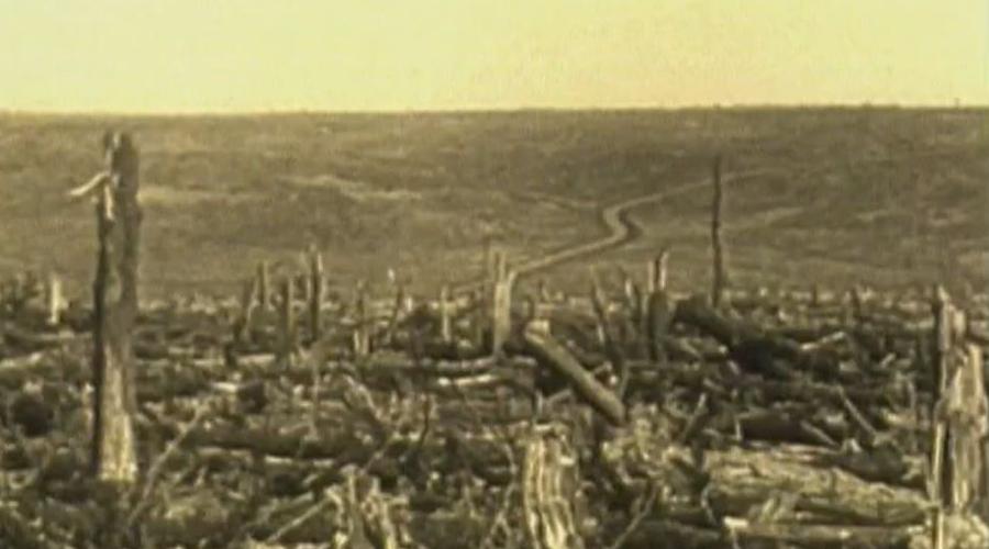 Расчистка местности Еще час командование отвело для наземного наступления. Первыми пошли саперы, требовалось срочно расчистить территорию для тяжелой техники. Люди работали вообще без защиты: дышать в противогазах было просто невозможно.