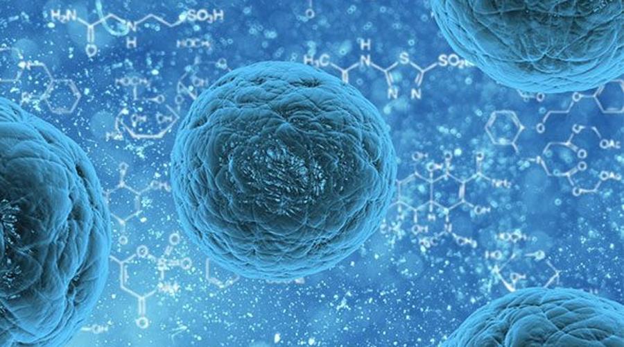 Реабилитация инсульта Использование стволовых клеток позволило врачам и ученым из Медицинской школы Стэнфордского университета в Калифорнии провести первую в мире полную реабилитацию пациентов после инсульта. В результате лечения многие вновь стали ходить. Это невероятный прорыв в истории медицины.