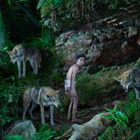 Реальные Маугли: дети, выжившие в дикой природе