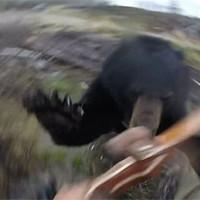 Черный медведь против охотника с луком: реальное видео