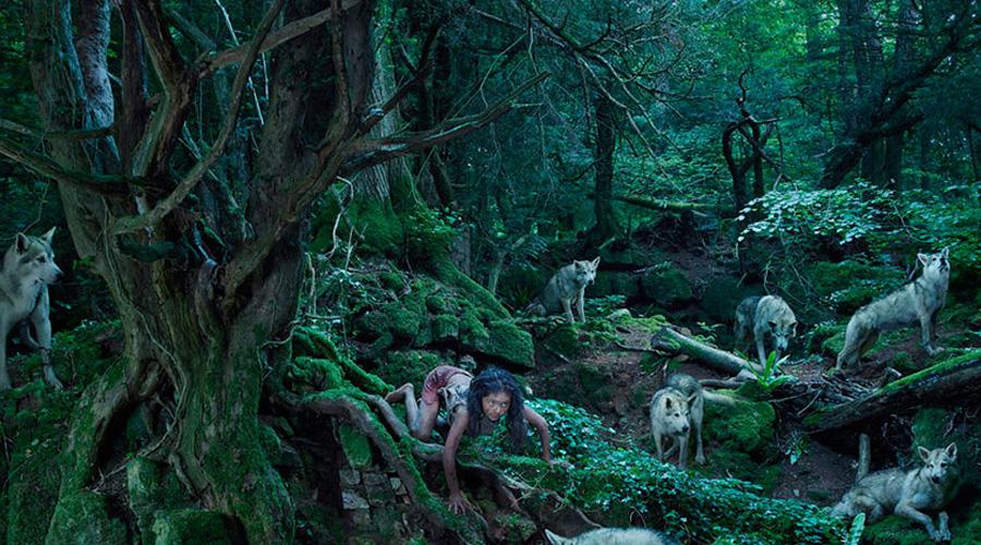 Лобо Мексика Крестьяне заметили девочку среди стаи волков, напавших на отару овец. В 1845 году явление дикого человека никого особо не удивило — мистика и колдовство считались само собой разумеющимися вещами. За девочкой охотились десять лет, но поймать ее так и не удалось.
