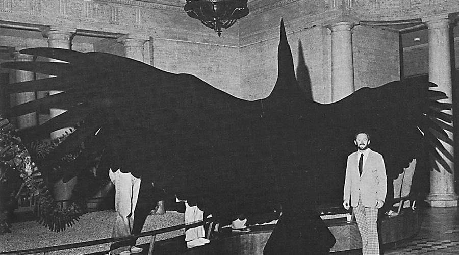Аргентавис Представьте себе орла с лысой головой, размахом крыльев под восемь метров и перьями, больше похожими на турецкие сабли. Аргентавис, живший около 5 миллионов лет назад на территории современной Аргентины, является самой крупной летающей птицей в истории мира. Хищник охотился на крупную добычу и человек стал бы неплохим дополнением к его рациону.