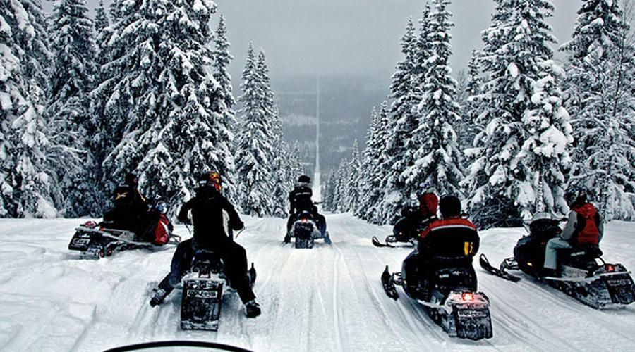 Норвегия и Швеция Еще круче выглядит граница между Норвегией и Швецией. Предприимчивые жители окрестных поселков даже предлагают туристам специальный аттракцион — поездку на снегоходах по двум странам сразу.