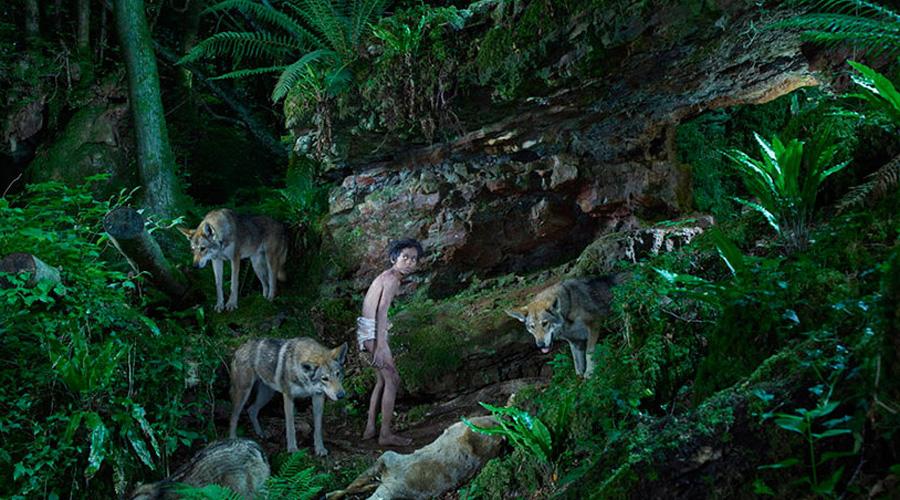 Шамдео Индия Группа индийских охотников поймала четырехлетнего мальчишку, играющего со стаей волков. Он вел себя точно так же, как окружающие щенята. Со временем ребенка удалось отучить от охоты на кур, а в хосписе Матери-Терезы он даже начал привыкать к людям и дожил до 1985 года. Говорить Шамдео так и не научился.