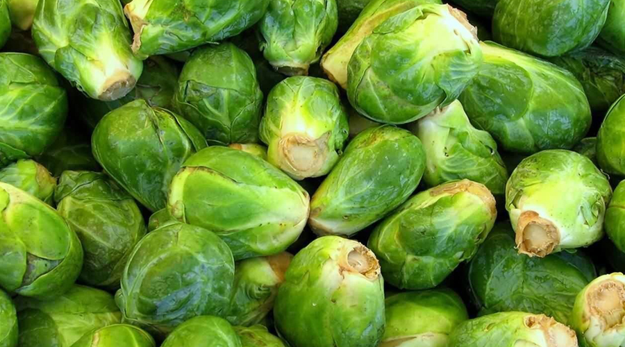 Брюссельский подарок Удивительно, отчего большинство людей не любят брюссельскую капусту. Между тем именно она содержит огромное количество питательных веществ и полезных для поддержания кислотно-щелочного баланса ферментов.