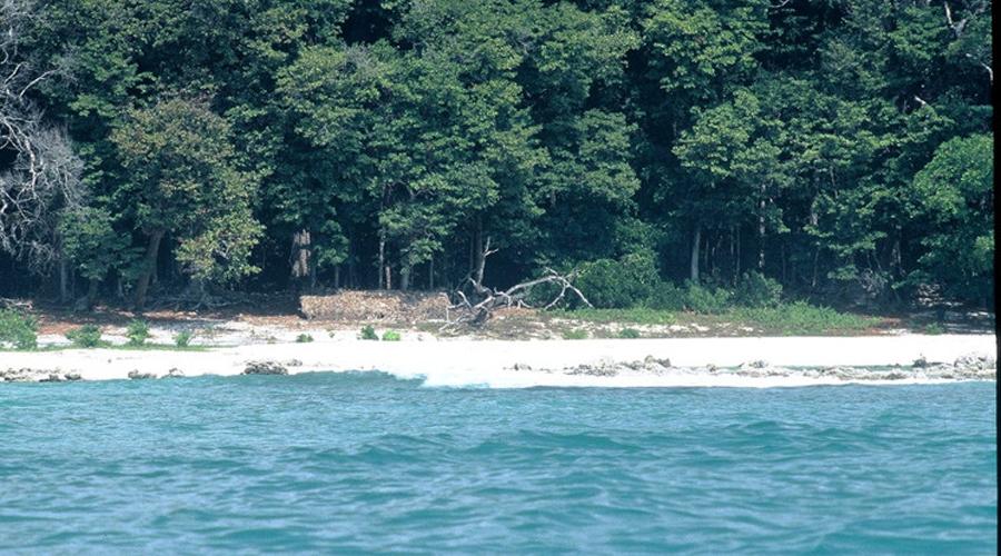 Сентинельские острова Вас арестуют только если успеют. Скорее всего, первыми успеют аборигены, которые не будут терять времени на всякую ерунду, вроде суда, а просто возьмут любопытного туриста на копья.