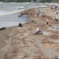 Купаться запрещено: как реально выглядят российские пляжи