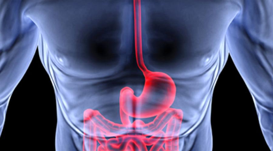 Без запоров Сидячая работа и беспорядочное питание приводят к развитию постоянных запоров, что в свою очередь не смешно, а вовсе даже опасно — согласно данным AUS, именно проблемы с кишечником повышают шансы онкологических опухолей. Клетчатка же нормализует работу желудочно-кишечного тракта.