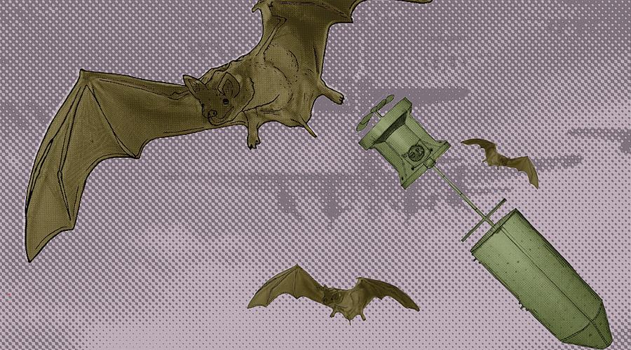 Идея на миллион жертв В основу устройства легла биология. Дело в том, что летучие мыши при определенной температуре просто впадали в спячку. Проект X-Ray рассматривал возможность прикрепления зажигательной бомбы к телу летучей мыши: перевозить снаряды планировалось при температуре в 4 градуса по Цельсию. Использовать таких зажигательных мышек предполагалось против Японии, где города традиционно возводились из легковоспламеняющихся материалов.