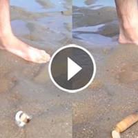 Посыпьте песок солью и приготовьтесь удивится. Кто знал, что это лежит у нас прямо под ногами!