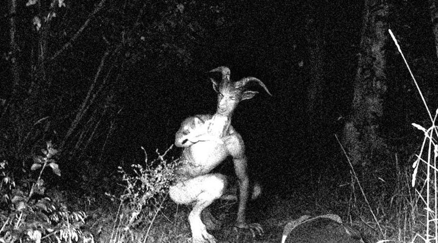 Человек-козел Согласно городской легенде, впервые это существо появилось в районе округа Принс-Джордж в Мэриленде. Тогда же по всему штату прокатилась необъяснимая волна зверств: люди находили обезглавленных собак, а подростки несколько раз были вынуждены просто спасаться бегством от пугающего создания.