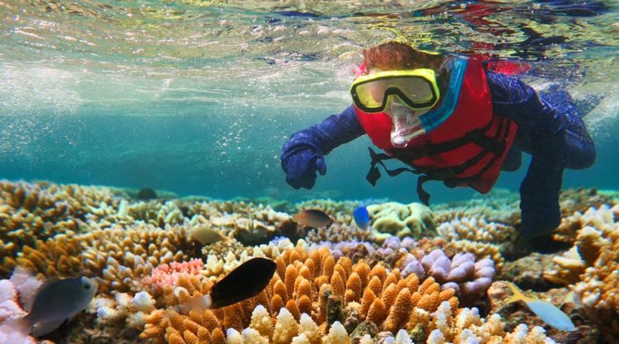 Большой Барьерный риф Океанологи предсказывают, что знаменитый Большой Барьерный риф будет необратимо поврежден к 2030 году. Двуокись углерода негативно влияет на кораллы, а глобальное потепление довершает разрушительную работу. Правительство Австралии пытается замедлить уничтожение кораллов, но против природы человек бессилен.
