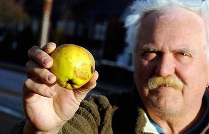 Фруктовая радуга Англия, 2011 Очередной необычный дождь прошел над Ковентри: с неба на испуганных горожан посыпались яблоки в огромных количествах. Людям пришлось прятаться под деревьями, а некоторые даже залезли под днища машин, ведь яблоки довольно тяжелые.