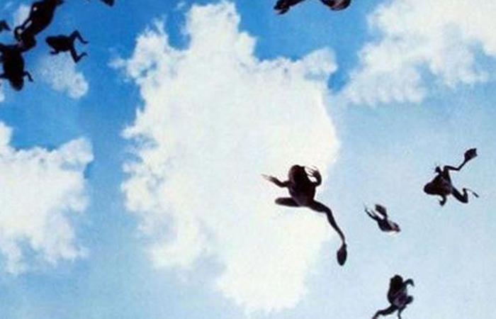 Дождь из лягушек Сербия, 2005 Местные жители были просто в панике, когда с небес обрушился настоящий дождь из жаб. Некоторые даже подумали, что начинается Судный день, но виной всему был всего лишь сильный вихрь, подхвативший несчастных лягушек из ближайшего озера и выкинувший их над городом.