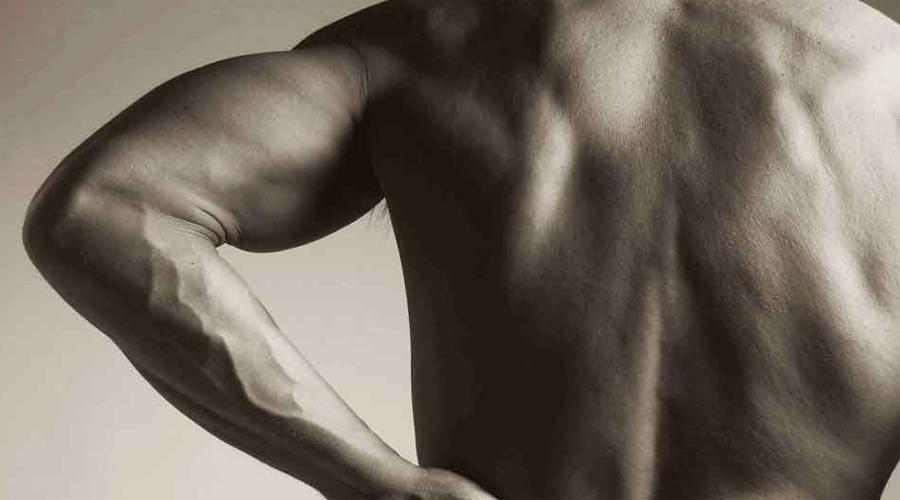 Ближе к телу Старайтесь держать вес как можно ближе к телу. Избегайте рывков — таким способом травмировать сухожилия проще всего.