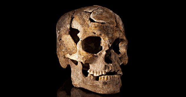 Странная изоляция В Мексике исследователи натолкнулись на странный факт при раскопках районов цивилизаций Соноры, Тланепантлы, Мичоакан. Дело в том, что черепа двух первых национальностей были схожи, в то время как останки мичоаканцев имели настолько своеобразную форму черепа, что больше напоминали другую нацию. Впоследствии оказалось, что цивилизация Мичоакан существовала в изоляции и развивалась по другому пути. Однако никаких физических барьеров на территории всех трех цивилизаций найдено не было, и теперь ученые ломают головы, пытаясь понять, отчего Мичоакан тысячи лет оставался генетически исключительной народностью.