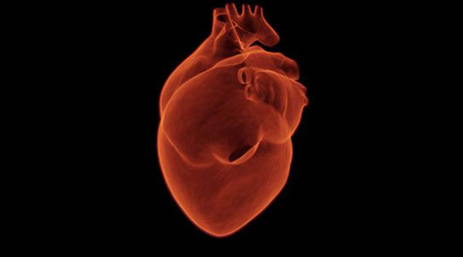 Тони Яхле Тони, фермер из Северной Каролины, рухнул на утренней пробежке с инфарктом. Его сердце не билось 45 минут, но каким-то чудом запустилось снова. Кардиологи в один голос заявили, что никогда ничего подобного не видели.