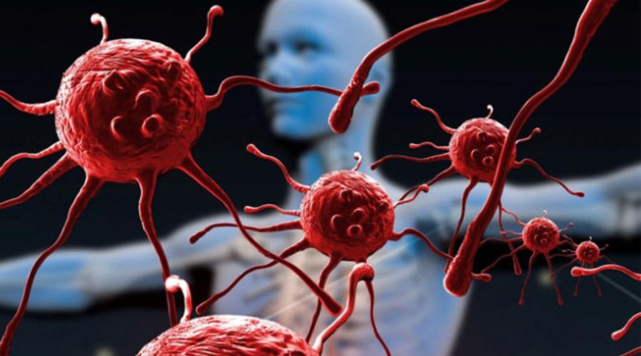 СПИД Бич нашего века подарили человеку обезьяны Центральной Африки. Вирус и сегодня вполне может распространяться с животными.