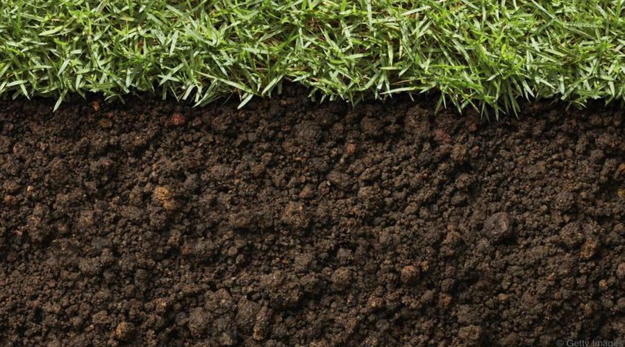 Влияние на мир В конце концов, разложившийся полностью труп значительно изменяет химический состав почвы. Энергия никуда не пропадает, просто поселившиеся в теле личинки при миграции передают ее окружающей среде. Другими словами, жизнь и смерть — это действительно одно и то же.
