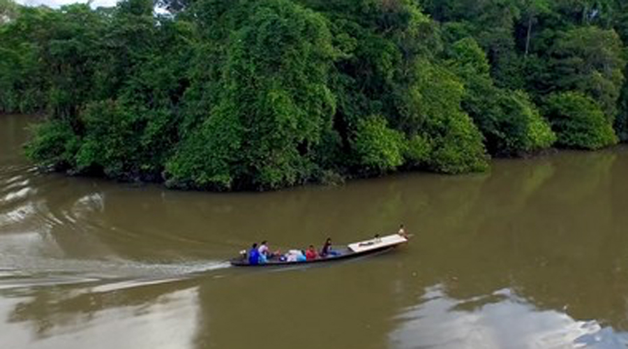 Амазонка Купаться здесь — все равно что засовывать голову в пасть тигра. Воды Амазонки очень коварны, а местные рыбы могут испугать до смерти. И это уж не говоря об анакондах, огромных змеях, способных движением мощного тела переломить человека пополам!