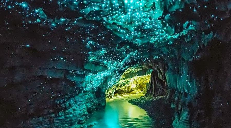Пещеры Вайтомо В Новой Зеландии находится одно из самых удивительных природных чудес мира. Пещеры Вайтомо стали домом для миллионов светлячков: в постоянной темноте они образуют на стенах пещеры свой собственный космос.