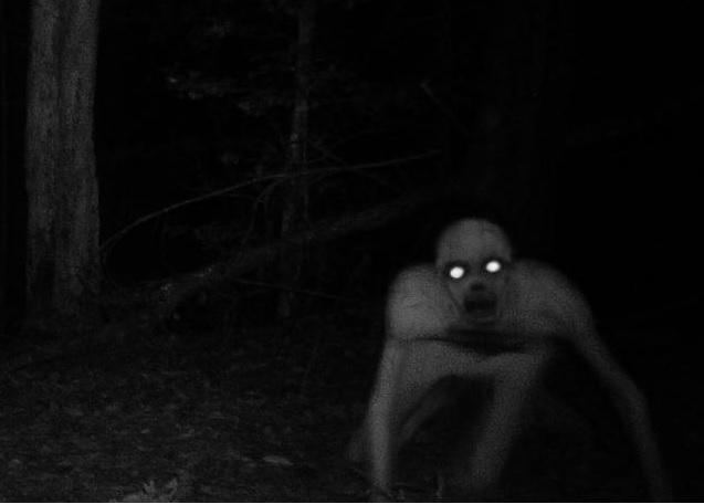 Нечто в лесах Луизианы В 2010 году в охотничьем заказнике в Луизиане камера ночного видения, установленная для слежения за животными, якобы запечатлела нечто ужасное: худое, быстро бегущее на четырех конечностях существо с горящими глазами. Что это было, доподлинно неизвестно, но здравомыслящие люди склоняются к тому, что появление в СМИ луизианских кадров было вирусной рекламой новой игры производства компании Wildgame Innovation. Источники, близкие к компании, это косвенно подтвердили.