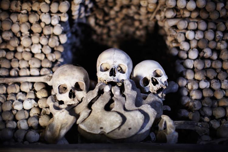 Великие каменоломни Парижские катакомбы были созданы еще в X веке. По правде говоря, раньше в этом месте располагались каменоломни — из добытого здесь известняка возведены стены Лувра и Собора Парижской Богоматери. Археологи полагают, что к сегодняшнему дню площадь катакомб расширилась до 11 000 квадратных метров. Сколько здесь покойников? Более семи миллионов.