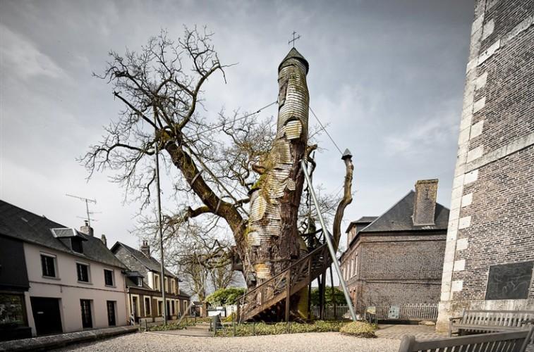 Дуб-часовня Старейший дуб во всей Франции в 1932 году получил статус исторического памятника. В XV веке огромное дупло этого дуба монахи приспособили под молельню и часовню.