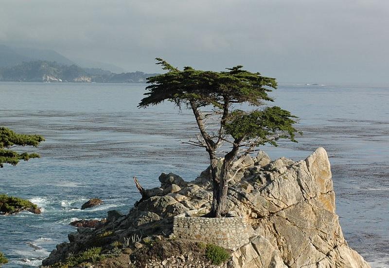 Одинокое озеро, Калифорния Очень старое, столь же одинокое, и занимает второе место в списке самых опасных в Калифорнии. Оно не имеет выхода к Тихому океану, но соленое настолько же, а щелочи в нем 10 pH. Ученые установили, что виной тому – оставшиеся еще с ледникового периода известняково-соляные колонны. Иногда к озеру прилетают птицы – орнитологи полагают, что просто из любопытства, поскольку у пернатых превосходный нюх, и не учуять смертельную опасность они не могут. Выживают сильнейшие.