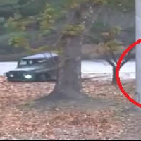 Драматический побег солдата из Северной Кореи в Южную попал на видео