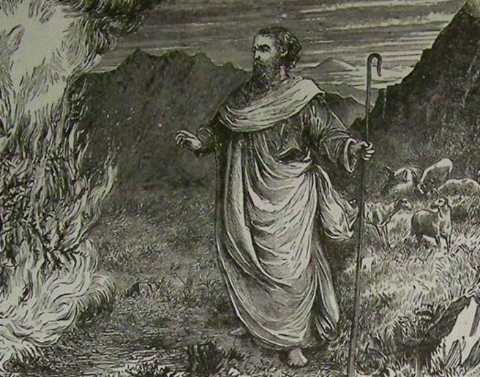 Неопалимая купина Там же, в пустыне, Моисею явился Бог в виде горящего и не сгорающего куста. Одна из научных теорий допускает, что растение было просто объято огоньками святого Эльма — выглядит вполне достоверно.