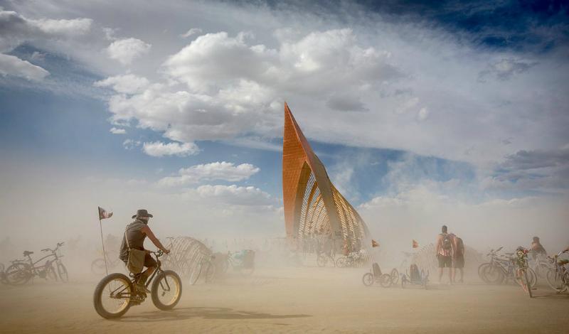Жуки Иногда насекомые появляются просто так, из ниоткуда. С этим странным явлением столкнулись гости знаменитого Burning Man: в 2015 году туча неопознанных жуков накрыла всю площадку фестиваля. Насекомые больно кусались, попутно разбрызгивая непонятную зловонную жидкость.