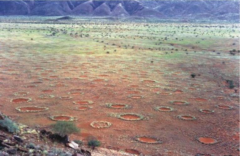 Круги фей На бескрайних просторах пустыни Намиб ученые нашли странные круги, датированные еще прошлым тысячелетием. Ни одна из теорий пока не может полностью объяснить их появление, хотя у местных племен есть несколько легенд о неких подземных драконах, в незапамятные времена выходивших на поверхность.