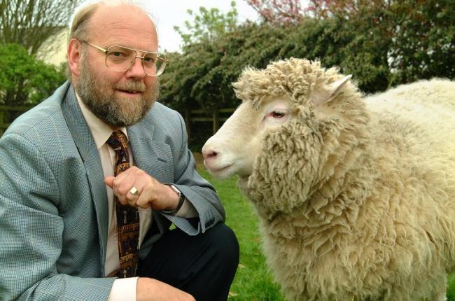 Овечка Долли Бедная овечка Долли совершила невероятный научный прорыв, но так никогда об этом и не узнала. Она стала первым успешно клонированным млекопитающим в истории — и единственной успешной из 277 попыток. Благодаря удачному завершению проекта, ученым смогли значительно улучшить технологию клонирования: сейчас только моральные и этические нормы мешают нам клонировать даже человека.