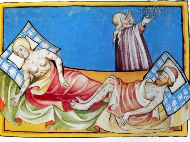 Крысы и Черная смерть Смертельная пандемия под названием «Черная смерть» уничтожила треть Европы (возможно, даже больше) в середине XIV века. Ученые идентифицировали чуму, инфекционное заболевание, вызванное бактерией Yersinia pestis. Эта бактерия заражает крыс и других мелких грызунов и передается людям укусами инфицированных блох. «Черная смерть» очень быстро распространилась из Центральной Азии в Европу, в результате чего погибло 25 миллионов человек.
